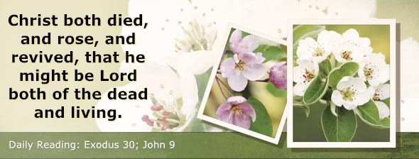 http://bibletruthpublishers.com/ComfortOfScriptures/wp-content/uploads/cos-hdg-2014-078.jpg