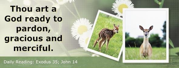 http://bibletruthpublishers.com/ComfortOfScriptures/wp-content/uploads/cos-hdg-2014-083.jpg