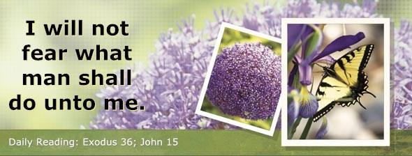 http://bibletruthpublishers.com/ComfortOfScriptures/wp-content/uploads/cos-hdg-2014-084.jpg