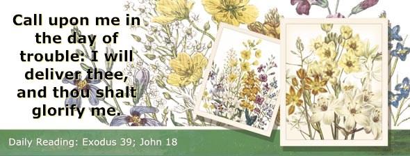 http://bibletruthpublishers.com/ComfortOfScriptures/wp-content/uploads/cos-hdg-2014-087.jpg
