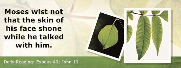 http://bibletruthpublishers.com/ComfortOfScriptures/wp-content/uploads/cos-hdg-2014-088.jpg