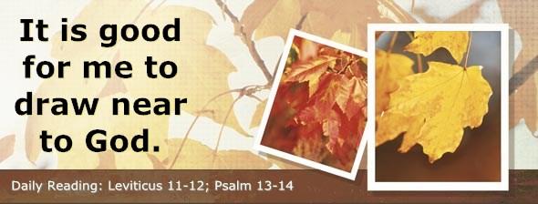 http://bibletruthpublishers.com/ComfortOfScriptures/wp-content/uploads/cos-hdg-2014-098.jpg