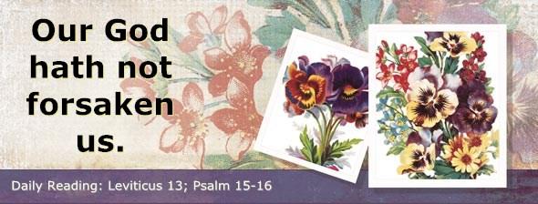 http://bibletruthpublishers.com/ComfortOfScriptures/wp-content/uploads/cos-hdg-2014-099.jpg