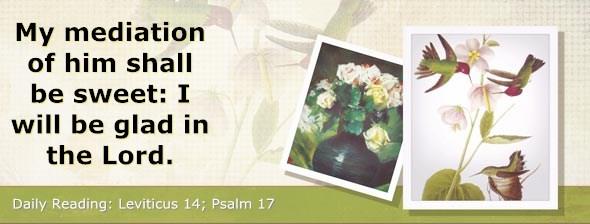 http://bibletruthpublishers.com/ComfortOfScriptures/wp-content/uploads/cos-hdg-2014-100.jpg