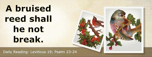 http://bibletruthpublishers.com/ComfortOfScriptures/wp-content/uploads/cos-hdg-2014-105.jpg