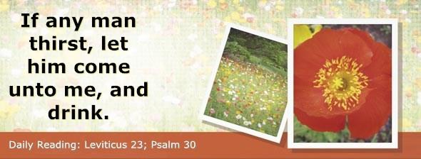 http://bibletruthpublishers.com/ComfortOfScriptures/wp-content/uploads/cos-hdg-2014-109.jpg