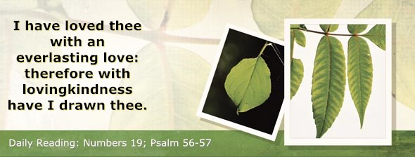 http://bibletruthpublishers.com/ComfortOfScriptures/wp-content/uploads/cos-hdg-2014-130.jpg