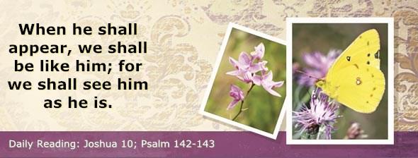 http://bibletruthpublishers.com/ComfortOfScriptures/wp-content/uploads/cos-hdg-2014-189.jpg