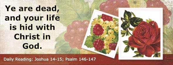 http://bibletruthpublishers.com/ComfortOfScriptures/wp-content/uploads/cos-hdg-2014-192.jpg