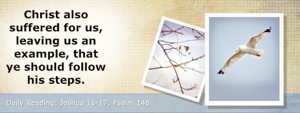 http://bibletruthpublishers.com/ComfortOfScriptures/wp-content/uploads/cos-hdg-2014-193.jpg