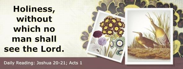 http://bibletruthpublishers.com/ComfortOfScriptures/wp-content/uploads/cos-hdg-2014-195.jpg