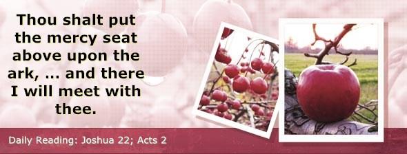 http://bibletruthpublishers.com/ComfortOfScriptures/wp-content/uploads/cos-hdg-2014-196.jpg