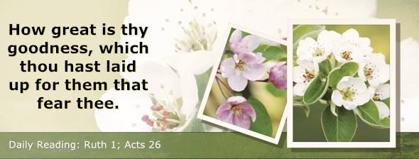 http://bibletruthpublishers.com/ComfortOfScriptures/wp-content/uploads/cos-hdg-2014-220.jpg