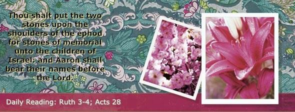 http://bibletruthpublishers.com/ComfortOfScriptures/wp-content/uploads/cos-hdg-2014-222.jpg