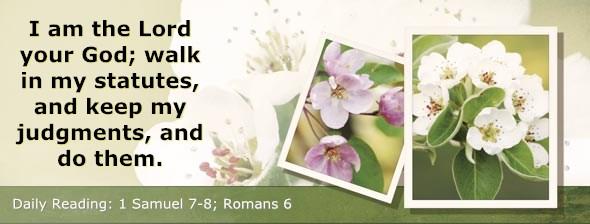 http://bibletruthpublishers.com/ComfortOfScriptures/wp-content/uploads/cos-hdg-2014-228.jpg