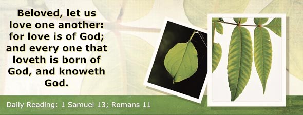 http://bibletruthpublishers.com/ComfortOfScriptures/wp-content/uploads/cos-hdg-2014-233.jpg