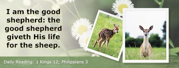 http://bibletruthpublishers.com/ComfortOfScriptures/wp-content/uploads/cos-hdg-2014-282.jpg