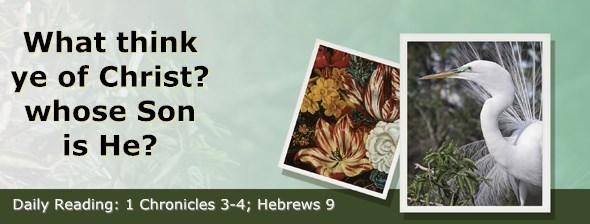 http://bibletruthpublishers.com/ComfortOfScriptures/wp-content/uploads/cos-hdg-2014-318.jpg