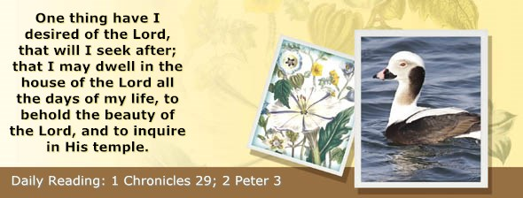 http://bibletruthpublishers.com/ComfortOfScriptures/wp-content/uploads/cos-hdg-2014-335.jpg