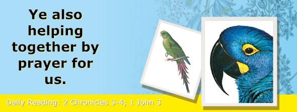 http://bibletruthpublishers.com/ComfortOfScriptures/wp-content/uploads/cos-hdg-2014-338.jpg