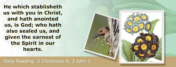 http://bibletruthpublishers.com/ComfortOfScriptures/wp-content/uploads/cos-hdg-2014-342.jpg