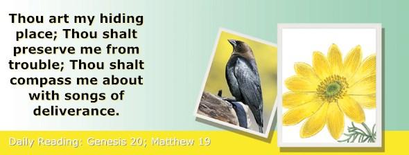 http://bibletruthpublishers.com/ComfortOfScriptures/wp-content/uploads/cos-hdg-2015-019.jpg