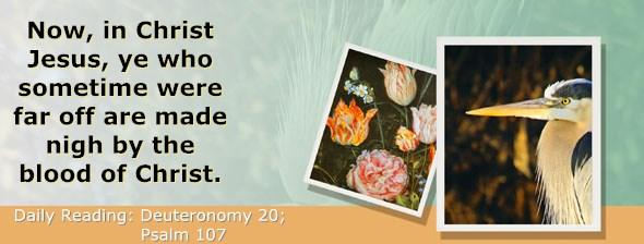 http://bibletruthpublishers.com/ComfortOfScriptures/wp-content/uploads/cos-hdg-2015-166.jpg
