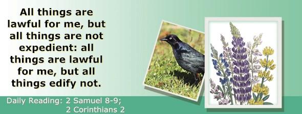 http://bibletruthpublishers.com/ComfortOfScriptures/wp-content/uploads/cos-hdg-2015-256.jpg