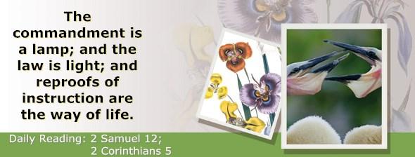 http://bibletruthpublishers.com/ComfortOfScriptures/wp-content/uploads/cos-hdg-2015-259.jpg