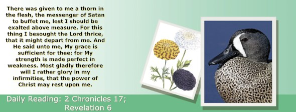 http://bibletruthpublishers.com/ComfortOfScriptures/wp-content/uploads/cos-hdg-2015-349.jpg