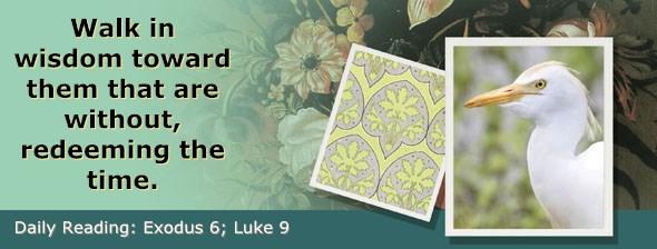 http://bibletruthpublishers.com/ComfortOfScriptures/wp-content/uploads/cos-hdg-2017-054.jpg
