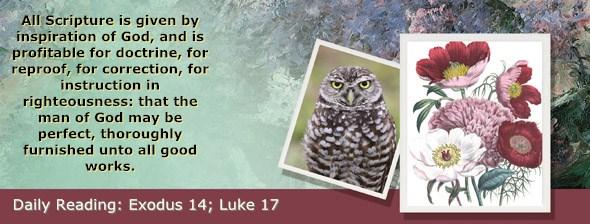 http://bibletruthpublishers.com/ComfortOfScriptures/wp-content/uploads/cos-hdg-2017-062.jpg