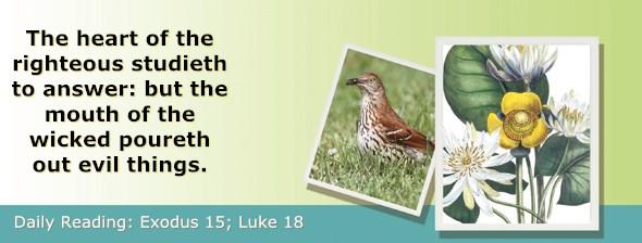 http://bibletruthpublishers.com/ComfortOfScriptures/wp-content/uploads/cos-hdg-2017-063.jpg