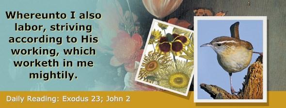 http://bibletruthpublishers.com/ComfortOfScriptures/wp-content/uploads/cos-hdg-2017-071.jpg