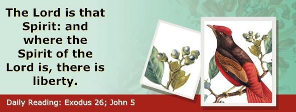 http://bibletruthpublishers.com/ComfortOfScriptures/wp-content/uploads/cos-hdg-2017-074.jpg