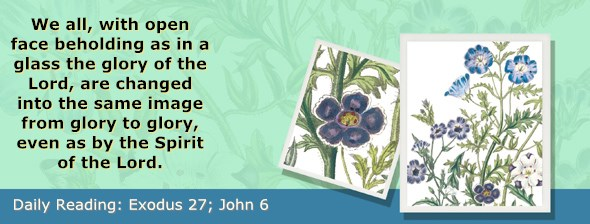 http://bibletruthpublishers.com/ComfortOfScriptures/wp-content/uploads/cos-hdg-2017-075.jpg