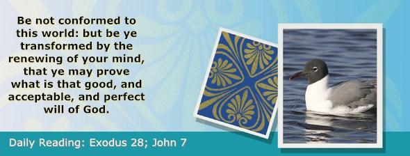 http://bibletruthpublishers.com/ComfortOfScriptures/wp-content/uploads/cos-hdg-2017-076.jpg