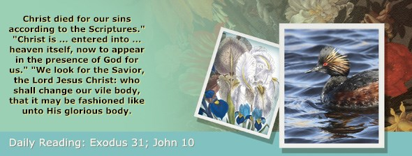 http://bibletruthpublishers.com/ComfortOfScriptures/wp-content/uploads/cos-hdg-2017-079.jpg
