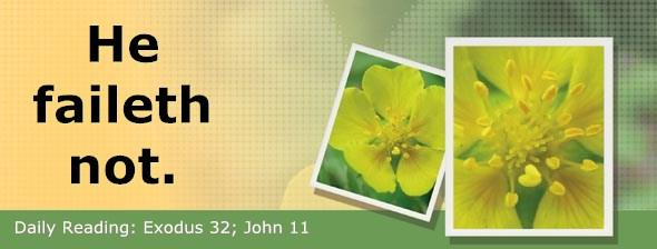 http://bibletruthpublishers.com/ComfortOfScriptures/wp-content/uploads/cos-hdg-2017-080.jpg