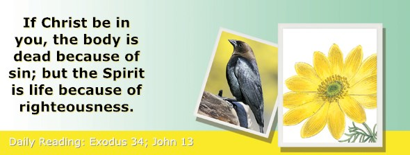 http://bibletruthpublishers.com/ComfortOfScriptures/wp-content/uploads/cos-hdg-2017-082.jpg