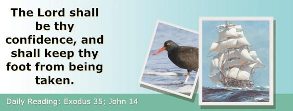 http://bibletruthpublishers.com/ComfortOfScriptures/wp-content/uploads/cos-hdg-2017-083.jpg