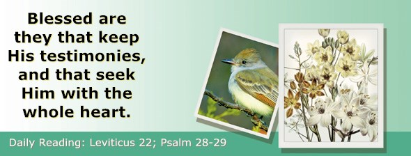 http://bibletruthpublishers.com/ComfortOfScriptures/wp-content/uploads/cos-hdg-2017-108.jpg