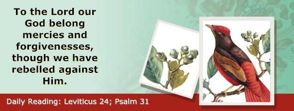 http://bibletruthpublishers.com/ComfortOfScriptures/wp-content/uploads/cos-hdg-2017-110.jpg