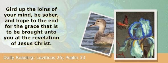 http://bibletruthpublishers.com/ComfortOfScriptures/wp-content/uploads/cos-hdg-2017-112.jpg
