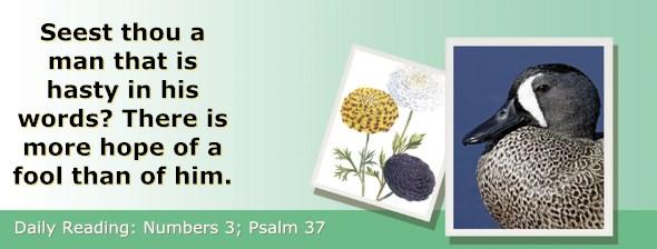 http://bibletruthpublishers.com/ComfortOfScriptures/wp-content/uploads/cos-hdg-2017-116.jpg