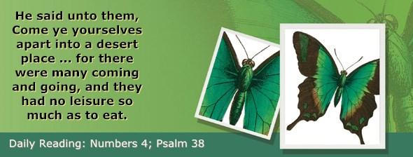 http://bibletruthpublishers.com/ComfortOfScriptures/wp-content/uploads/cos-hdg-2017-117.jpg