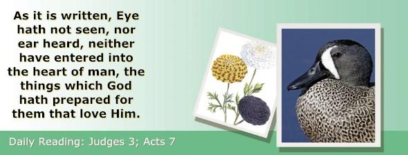 http://bibletruthpublishers.com/ComfortOfScriptures/wp-content/uploads/cos-hdg-2017-201.jpg