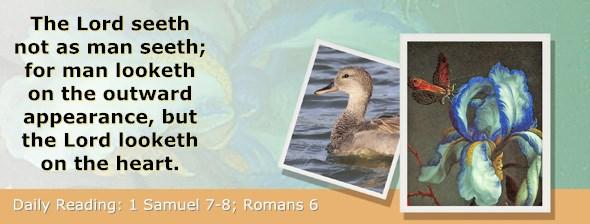 http://bibletruthpublishers.com/ComfortOfScriptures/wp-content/uploads/cos-hdg-2017-228.jpg