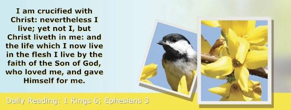 https://bibletruthpublishers.com/ComfortOfScriptures/wp-content/uploads/cos-hdg-2017-276.jpg