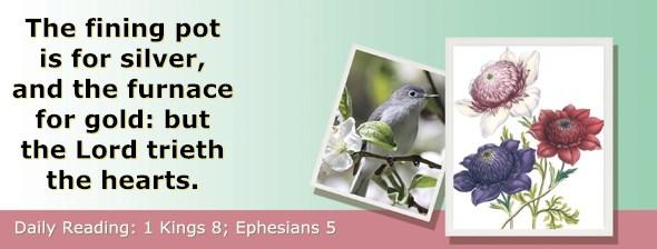 https://bibletruthpublishers.com/ComfortOfScriptures/wp-content/uploads/cos-hdg-2017-278.jpg